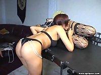 Bondage tranny gets blowjob
